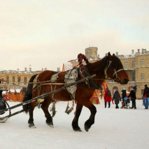 Фестиваль Новогодняя кутерьма