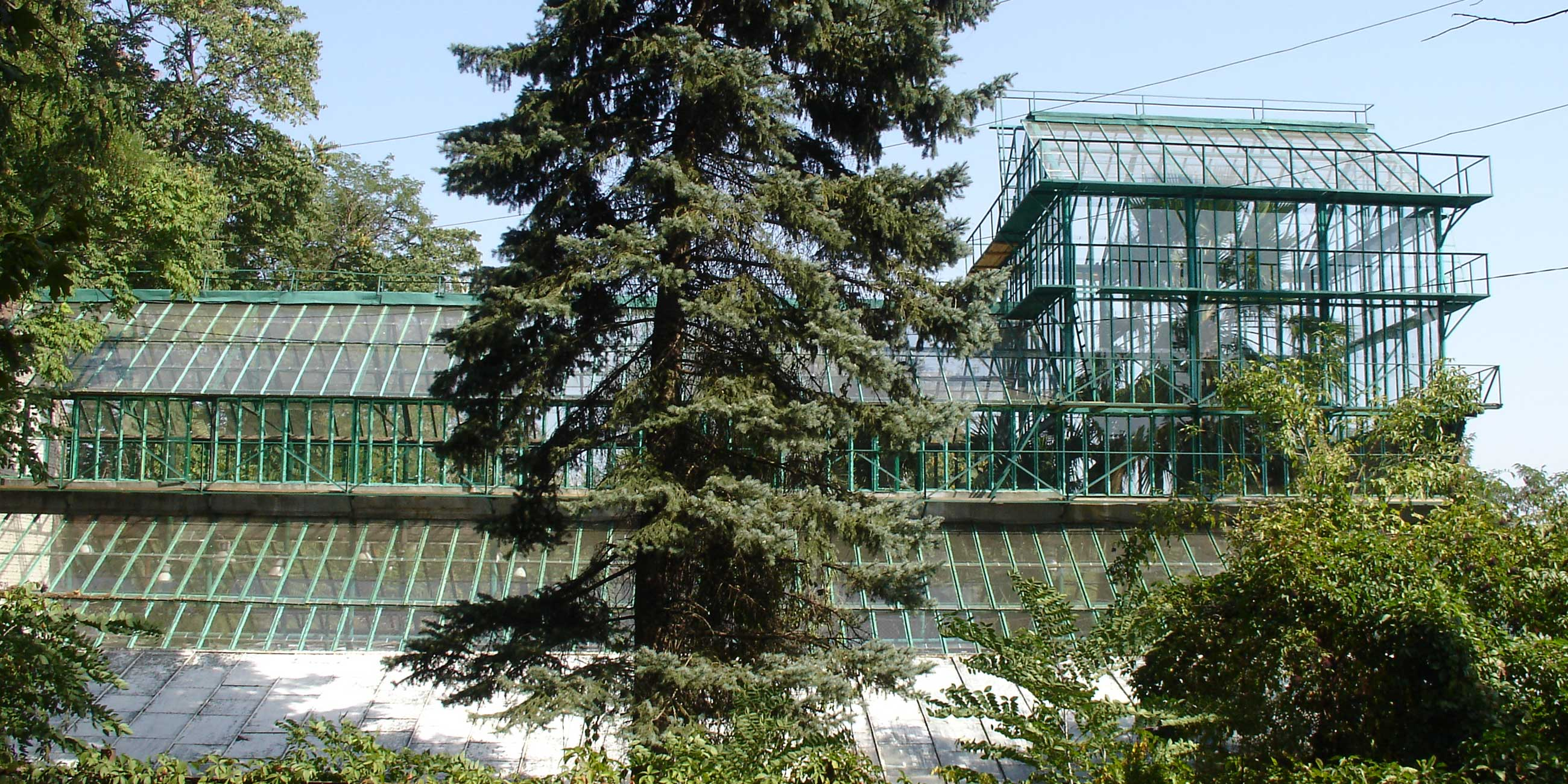 Самые интересные фотографии получаются у здания университета с большой оранжерейФото: Александр Роумега, commons.wikimedia.org